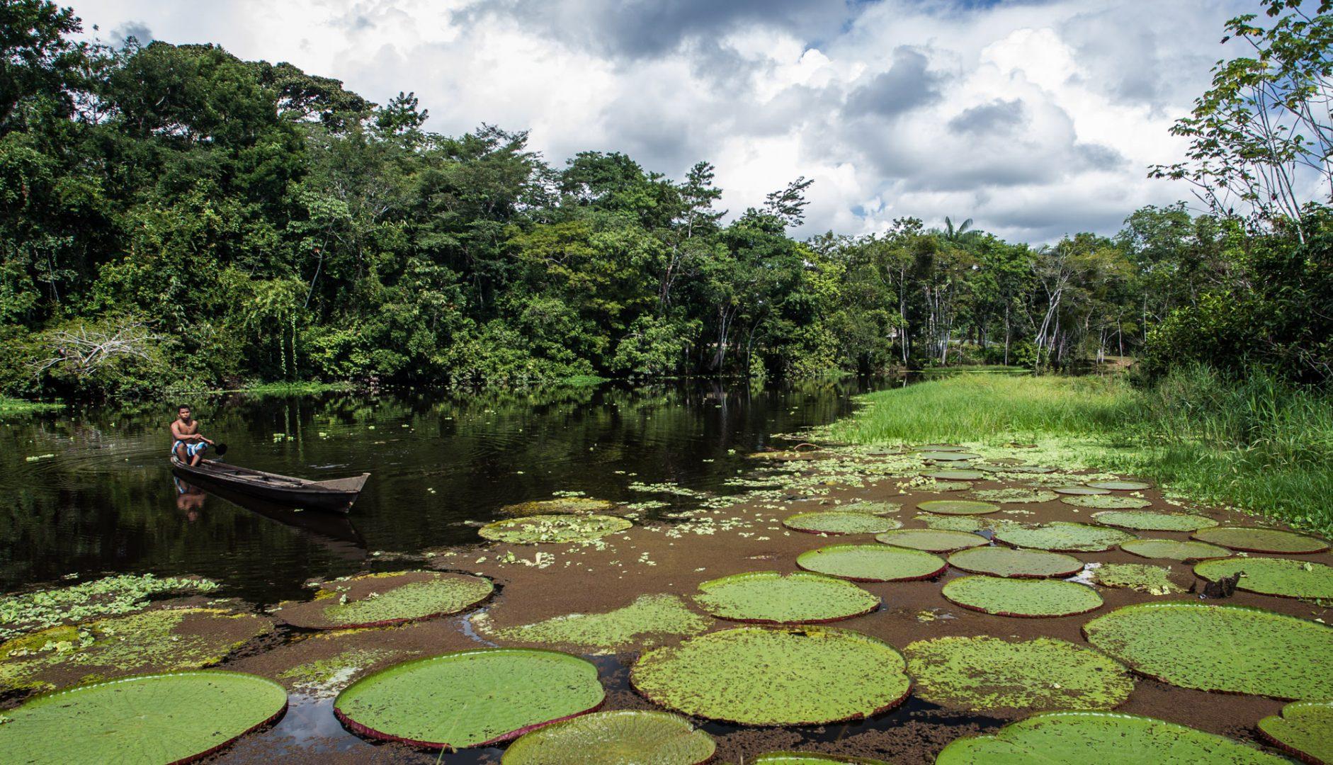 O Acre possui 87% de sua floresta preservada (Foto: Gleilson Miranda/Secom)